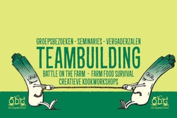 Teambuilding & survival